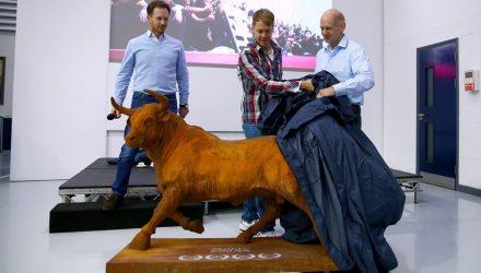 Vettel-Red_Bull-Gift.jpg
