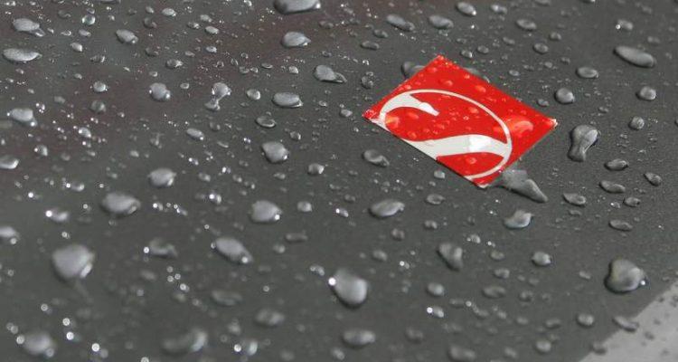 C31-nose-Sauber_Logo.jpg