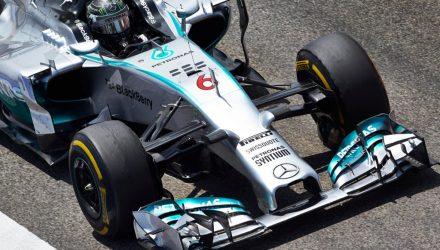 Nico_Rosberg-Bahrain-2014-ShortNose.jpg