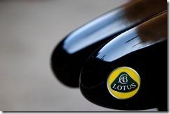 Lotus-Nose_Logo_details