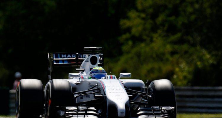Felipe_Massa-Hungarian_GP-2014-S01.jpg