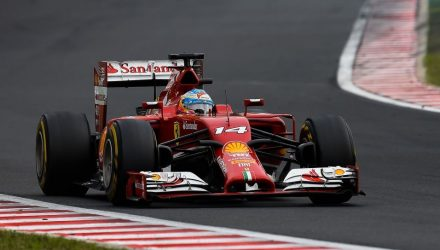 Fernando_Alonso-Hungarian_GP-2014-R02.jpg
