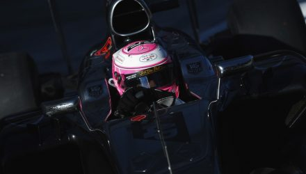 Jenson_Button-Russian_GP-2014-S01.jpg